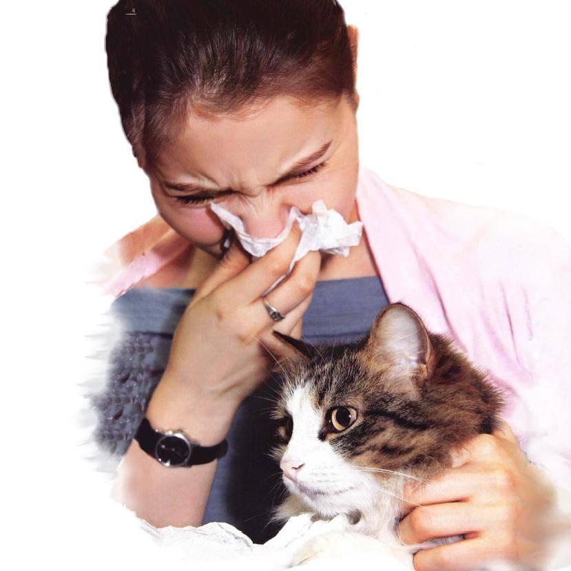лечение аллергии на лице у взрослых