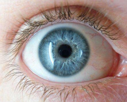 Цвет глаз зелено-голубой