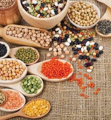 почему бобовые богаты белками