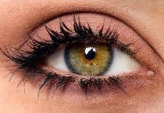 Что означают карие глаза?