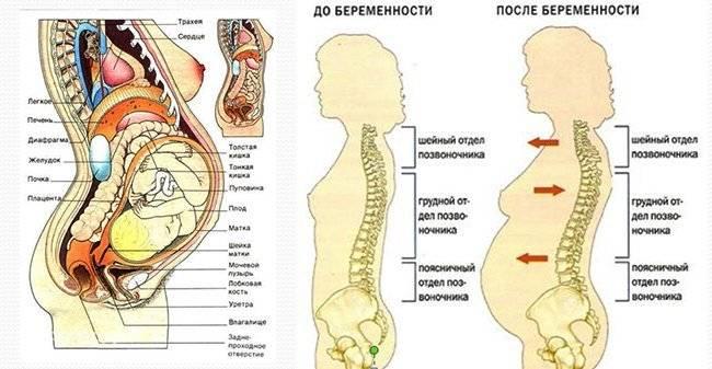 Когда боли в спине при беременности считаются опасными и неопасными