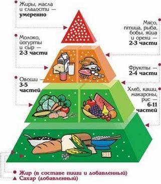 Общие рекомендации и полезные продукты для питания при беременности