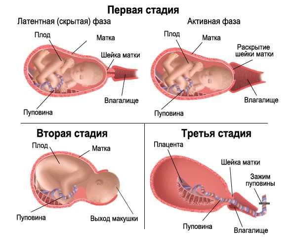 Как проходят роды на 38 неделе беременности?