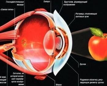 Коррекция зрения стоимость операции в уфе
